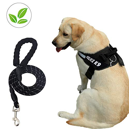 Dog Harness and Dog Leash Set No Pull Pet Harness Adjustable Vest Harness Dog Leash Puppy Harness Night-light Dog Pet Harness with Soft Mesh Nylon Dog Chest Harness for Small Medium Large Dogs Cat (M)