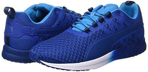 Chaussures V2 Xt Puma Mesh Danube Homme blue Blue true De Bleu 01 Pulse Fitness wZCqUpI
