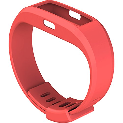 Altra IFITBAND C Ifit Band Clip
