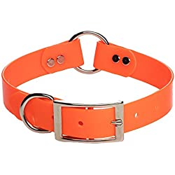 Mendota Pet Dog Safety Collar, Orange, 1 x 20-Inch