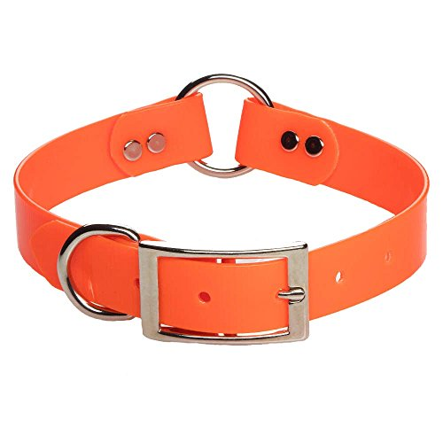 Mendota Pet Dog Safety Collar, Orange, 1 x 22-Inch