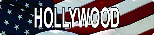 (Any and All Graphics HOLLYWOOD American Flag design patriotic 8