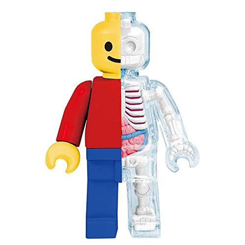 Anatomical LEGO Brick Man