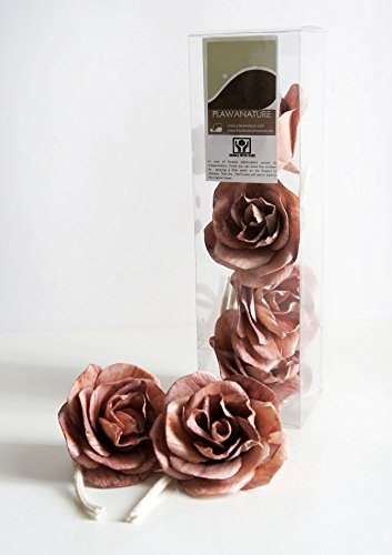 Plawanature Set of 4 Brown Rose Sola Flower with Reed Diffuser for Home Fragrance.