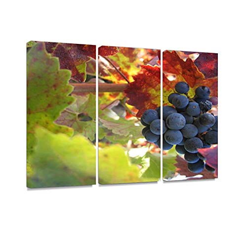 (Cabernet Print On Canvas Wall Artwork Modern Photography Home Decor Unique Pattern Stretched and Framed 3 Piece)