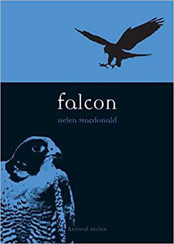 Falcon Animal Helen Macdonald 9781861892386 Amazon Books