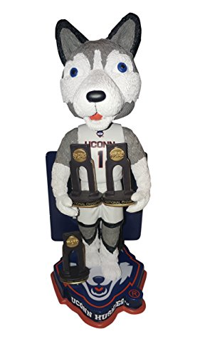 Used, UConn Huskies Multiple Men's College Basketball National for sale  Delivered anywhere in USA