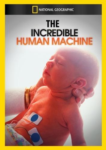 The Incredible Human Machine
