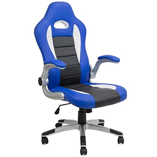 Barton Executive Computer Desk Chair, Racing Car Gaming Chair (black/blue)