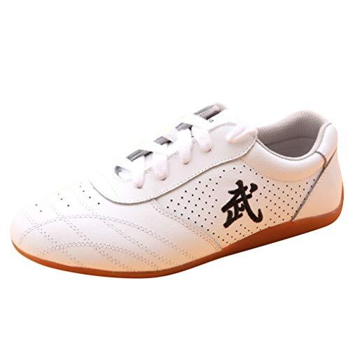 BJSFXDKJYXGS Chinese Wushu Shoes taolu Kungfu Martial Shoes Taichi Shoes for Men Women Fashion Sneakers (US5.5//EUR36//23CM, White Ventilate)
