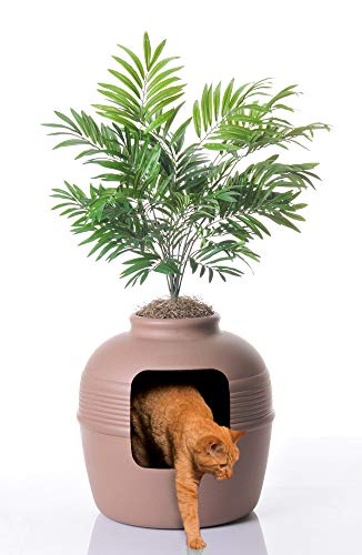 Good Pet Stuff Plant