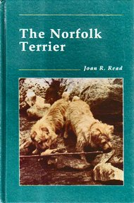 The Norfolk Terrier