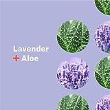 Everyone Hand Sanitizer Spray: Lavender and Aloe, 2