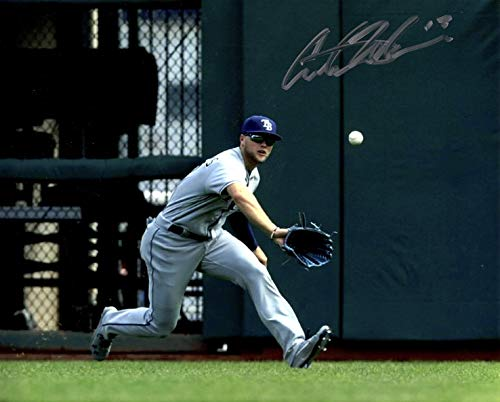 (AUSTIN MEADOWS Hand SIGNED AUTOGRAPHED 8x10 Tampa Bay RAYS PHOTO w/COA)