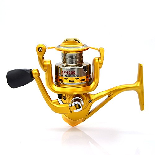 Fishing Reels, High Speed Fishing Tackle Spin Reel Full Metal Trolling Reels Collapsible Handle and Fixed-spool Casting Spinning Reels Spinning Fishing Reels for Anglers in Luxury Gold (AF5000)
