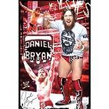 "Daniel Bryan - WWE 2014 22""x34"" Art Print Poster"