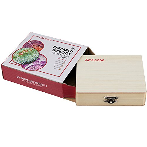 AmScope PS25 Prepared Microscope Slide Set for Basic Biological Science Education, 25 Slides, Includes Fitted Wooden…