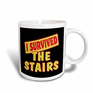 Dooni Designs Survive Sayings - I Survived The Stairs Survial Pride And Humor Design - 11oz Mug (mug_118389_1)
