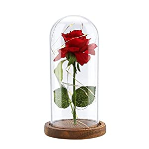 LanXi Rose Lasts Artificial Flower Forever LED Light in Glass Dome Love Forever Gift Wedding Valentine's Day Anniversary Birthday 29