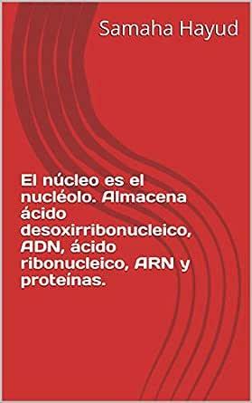 El núcleo es el nucléolo. Almacena ácido desoxirribonucleico ...