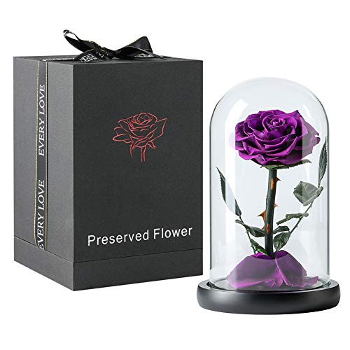Beauty and The Beast Rose Kit, Preserved Real Rose with Fallen Petals in Glass Dome on Wooden Base Great for Valentine's Day Mother's Day Anniversary Wedding (Purple)]()