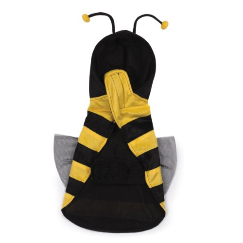 Dog In Bee Costume (Casual Canine Polyester Honey Bee Dog Costume, Medium, 16-Inch, Black/Golden)
