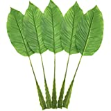 Warmter 5Pcs Tropical Leaves,Fake Artificial Banana Leaf for Home Kitchen Party Decorations (Green)