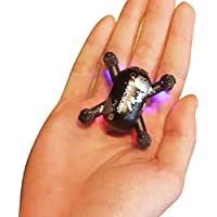 Naladoo SH10 Mini Selfie Drone With 0.3MP HD Camera Quadcopter 6AXIS RC Helicopter,Xmas Gift for Your Kids