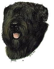 2 Stickers Hond - Bouvier des Flandres [r038]