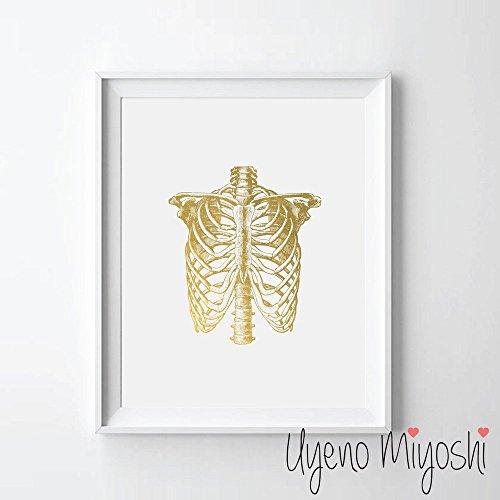 Wall Cage Art (Human Thorax Gold Foil Art Print Human Thorax Anatomy Gold Print Human Rip Cage Gold Wall Art Decor 08 x 10)