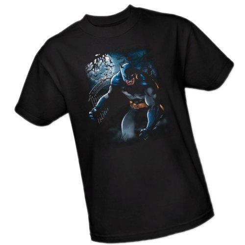 Light of the Moon -- Batman Adult T-Shirt, X-Large ()