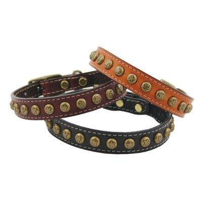 "Heirloom Star Dog Collar Color: Tan, Size: 0.75"" x 14"""