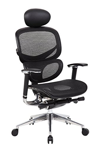 Boss Office Products B6888-BK-HR Multi-Function Mesh Chair with Headrest in Black