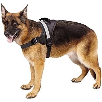 Big Dog Soft Reflective No Pull Black Harness Size L 26-36 inch