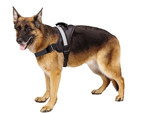Heavy Duty Harness (Big Dog Soft Reflective No Pull Black Harness size XL 36-46inch)