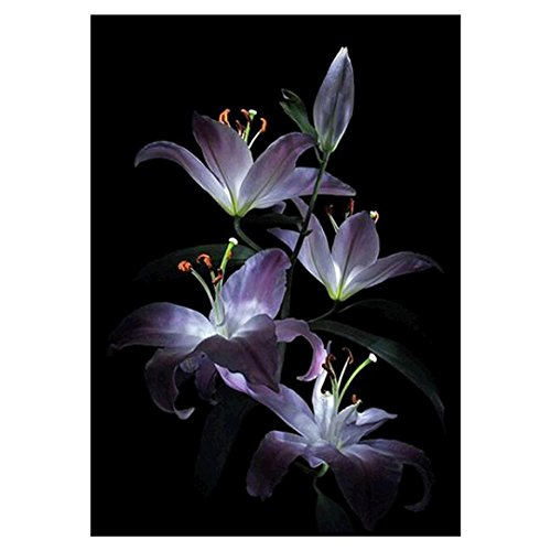 5D DIY Diamond Painting Embroidery,Lisin Flowers 5D Diamond Embroidery DIY Craft Painting Cross Stitch Mosaic Home Decor Gift Wall Sticks (Flowers, 30cm (Board Flowers Painting)