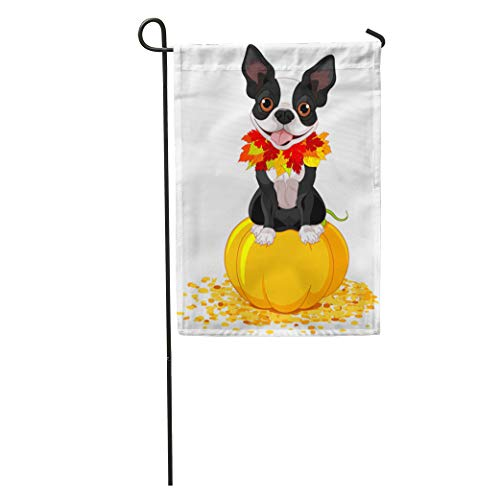 Semtomn Garden Flag Dog Boston Terrier Sits on Pumpkin Halloween Cartoon Costume Animals Home Yard Decor Barnner Outdoor Stand 28x40 Inches Flag ()