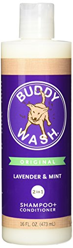 Cloud Star Lavender & Mint Corporation Buddy Wash, 16 Oz, Pack Of 1