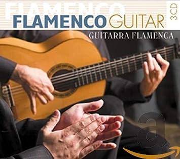 Flamenco Guitar: Flamenco Guitar-Guitarra Flame: Amazon.es: Música