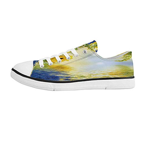 Yellow and Blue Comfortable Low Top Canvas ShoesRomantic Bouquet of Hydrangeas and Asters on Water Background for Men Boys,US 6.5