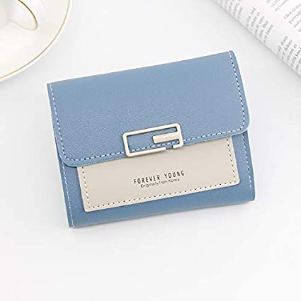 Seal_shoopee - Monedero para Mujer, diseño de Hebilla, Azul ...