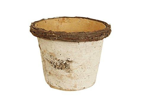 birch pots - 1