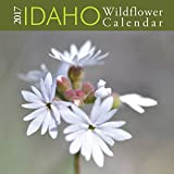 2017 Idaho Wildflower Calendar