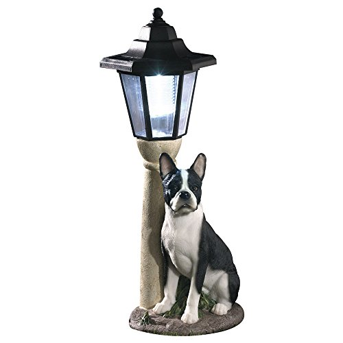 Bits and Pieces-Solar Boston Terrier Lantern-Solar Powered Garden Lantern - Resin Dog Sculpture with LED Light ()