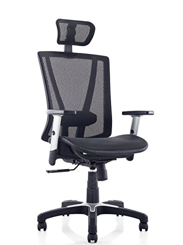 Ergomax Fully Meshed Ergo Office Chair with Headrest (Black)