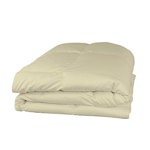 Relaxare Twin 300TC 100% Egyptian Cotton Beige Solid 1PCs Comforter Solid- Ultra Soft Breathable Premium Fabric