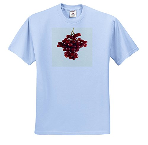 3dRose TDSwhite – Farm and Food - Food Red Grapes Fresh Grapevine - T-Shirts - Toddler Light-Blue-T-Shirt (2T) (ts_285168_63) ()