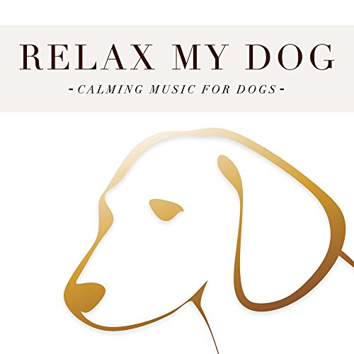 Relax my Dog: Calming Music fo...