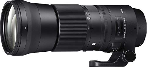 Sigma 150-600mm 5-6.3 Contemporary DG OS HSM Lens for Nikon (Best Wildlife Lens For Nikon D500)