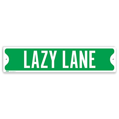 PetKa Signs and Graphics PKSS-0006-NA_18x4''Lazy Lane'' Aluminum Sign, 18'' x 4'', White on Green by Petka Signs and Graphics